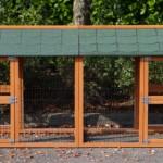 Konijnenren of kippenren nodig: Dubbele Aanbouwren Prestige Medium
