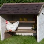 Kippenzitstokken op houders in kippen schuilplaats
