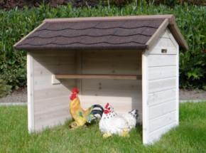 Kippen Schuilplaats