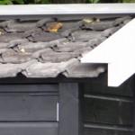 Geimpregneerd kippenhok met dakpannen