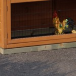 Funderingsset geïmpregneerd voor kippenhok - konijnenhok