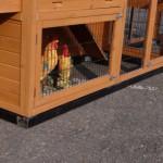Funderingsset zwart geïmpregneerd voor kippenhok - konijnenhok Ambiance Large