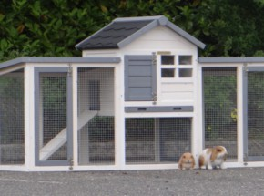Plexiglas Isolatie Set voor konijnenhok Advance Dubbel
