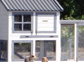 Plexiglas Isolatie Set voor konijnenhok Nice met ren Advance