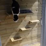 Houten plankjes worden naar eigen fantasie gemonteerd.