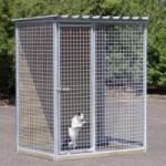 Kattenren Sjaan 150x100 cm
